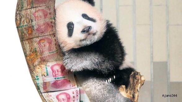Panda piyasasında geri sayım