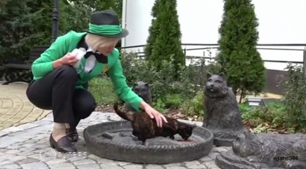 Rusya'da sıra dışı bir iş: Kedi şefliği