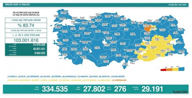Vaka sayısı 27 bin 802,Ölüm 276...